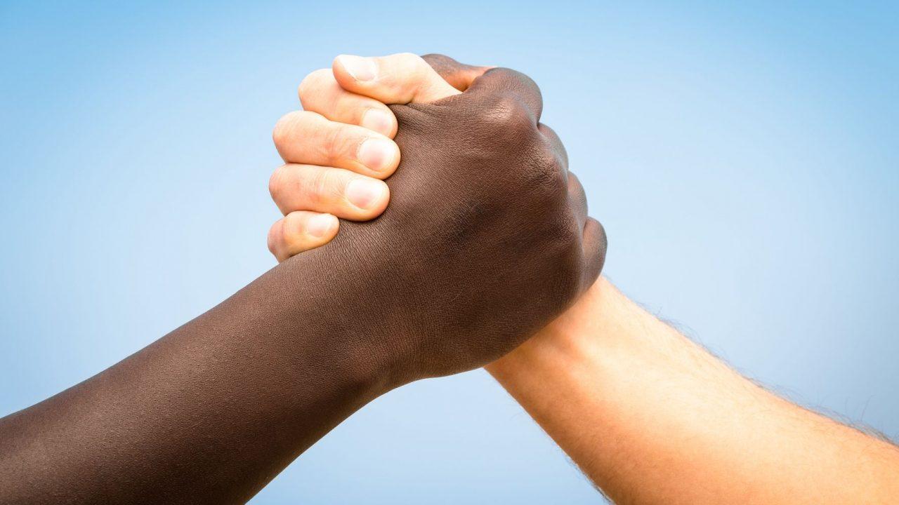 alto al racismo